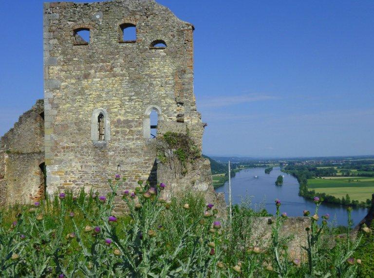 Grossansicht in neuem Fenster: Burgruine Donaustauf